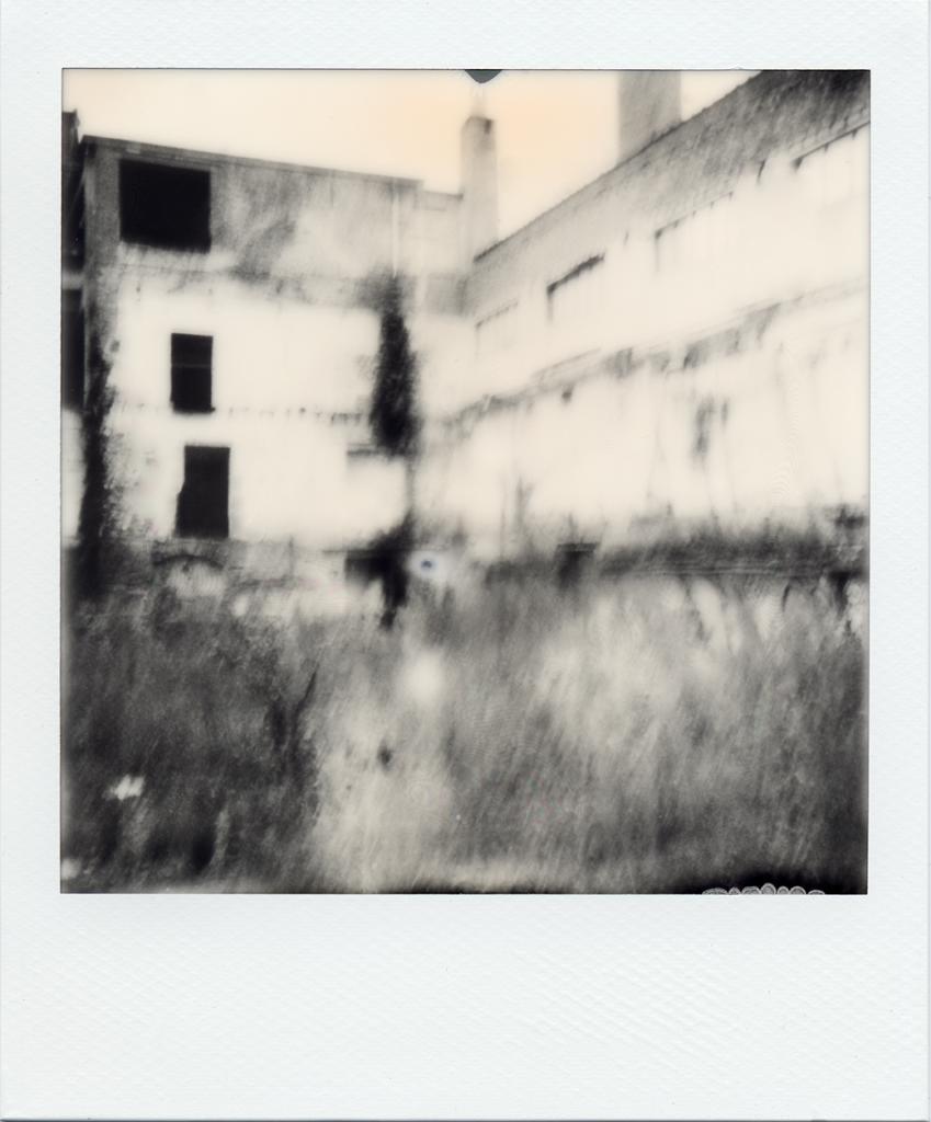bruxelles-26-12-2012d.jpg