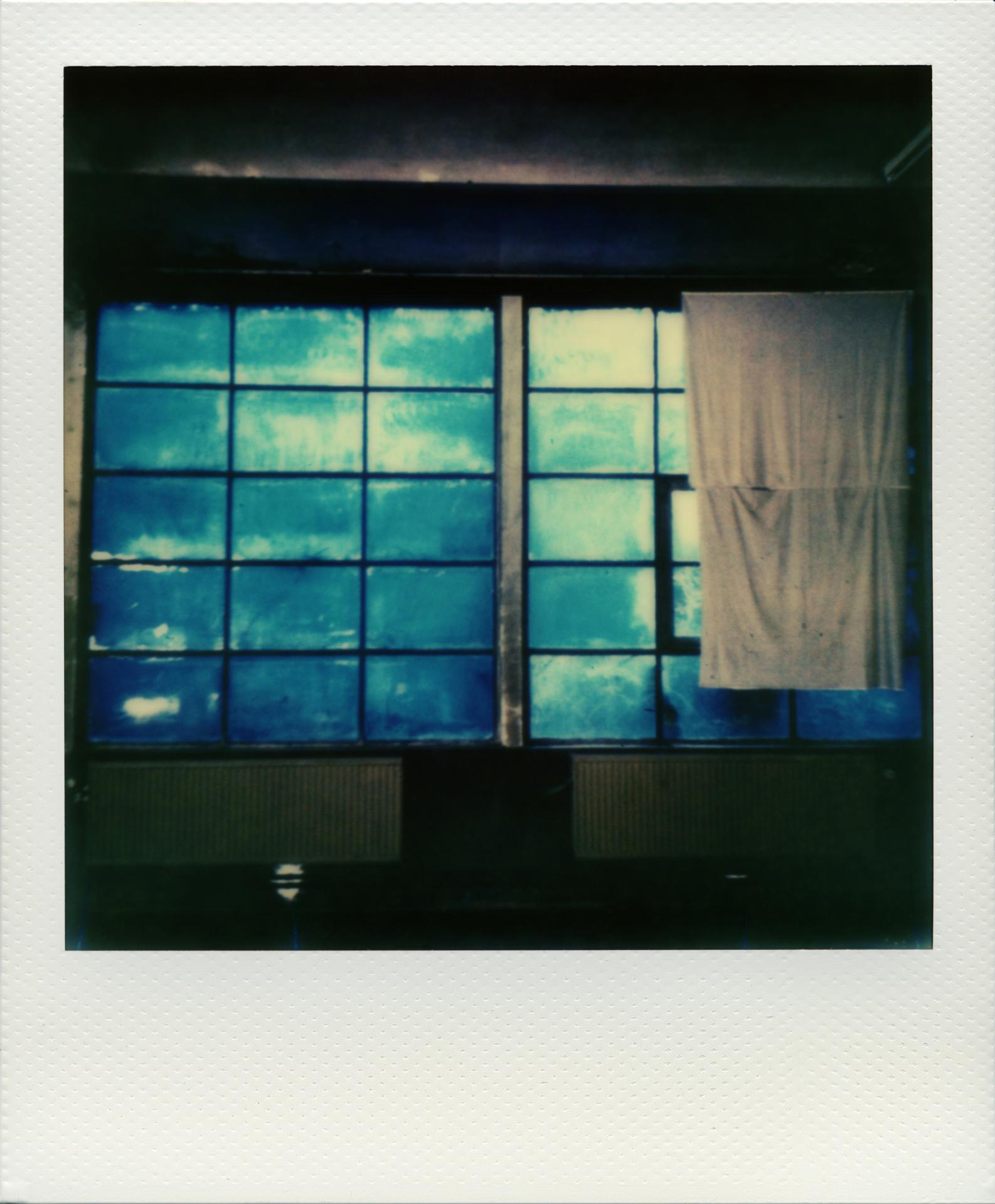 Pola windows 02