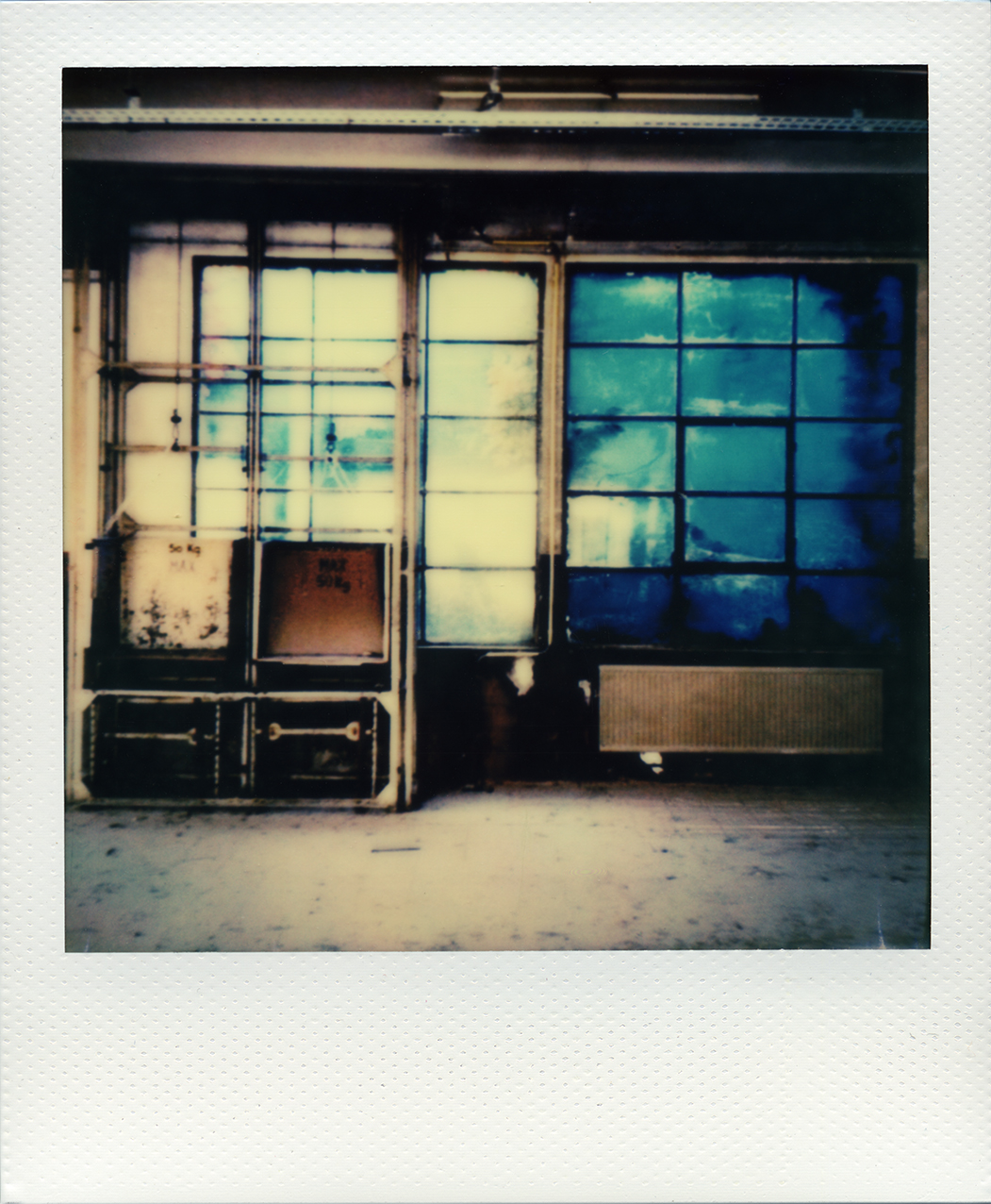 Pola windows 04