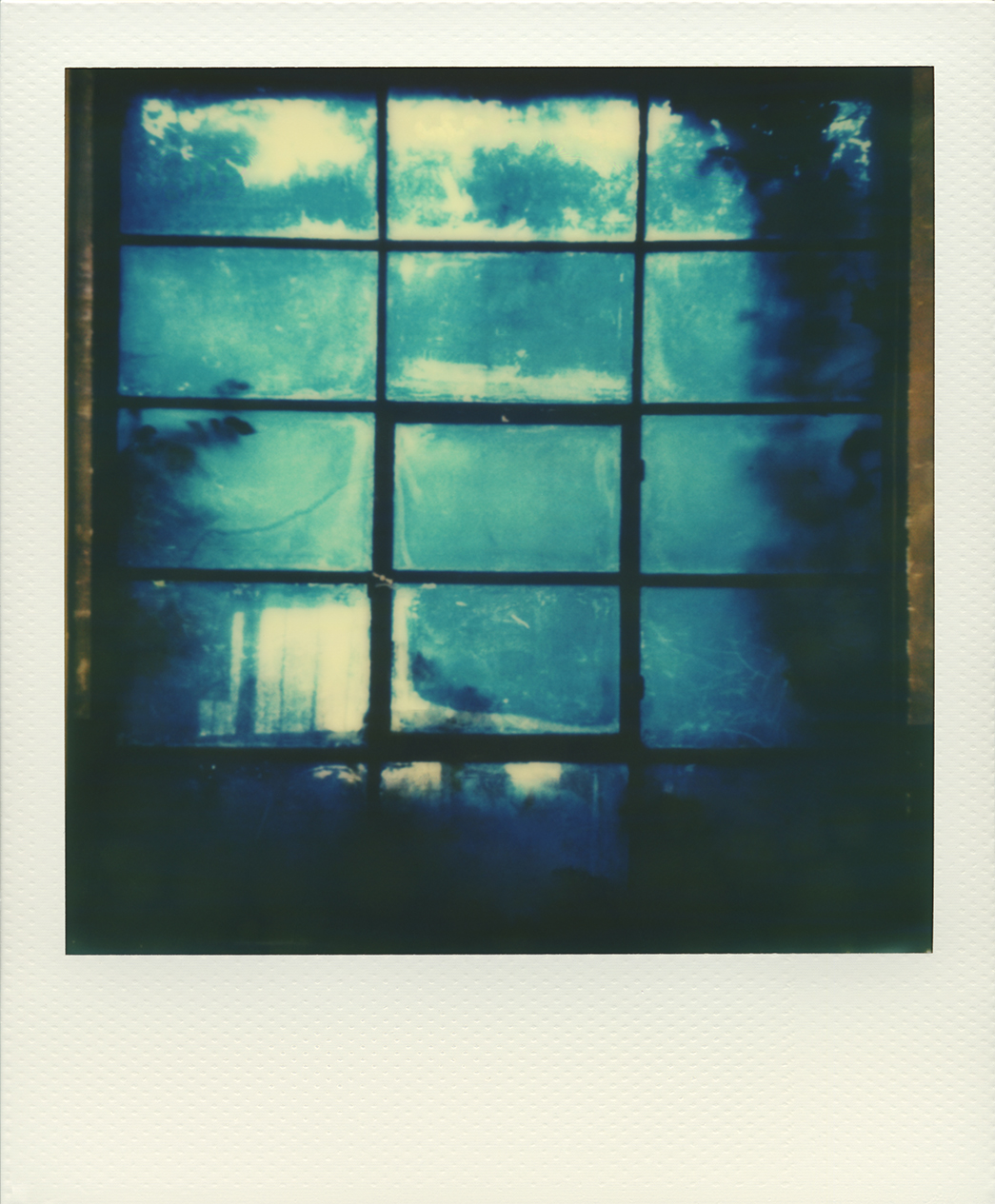 Pola windows 07